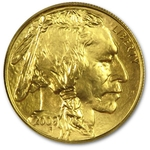 2009 1 Oz Ounce American Gold Buffalo Coin BU