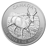 2013 Canadian Silver Antelope Coin Wildlife Series With Air-Tite