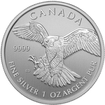 2014 1oz Canadian Silver Peregrine Falcon Coin Birds Of Prey