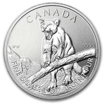 2012 Canadian Silver Cougar Coin Wildlife Series With Air-Tite