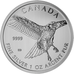 2015 1 oz Silver Birds of Prey Series Red Tailed Hawk Coin
